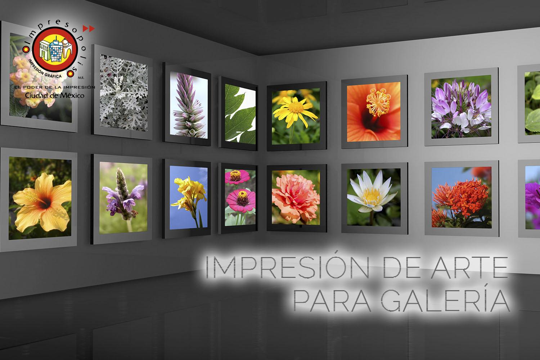 IMPRESION DE ARTE PARA GALERIA