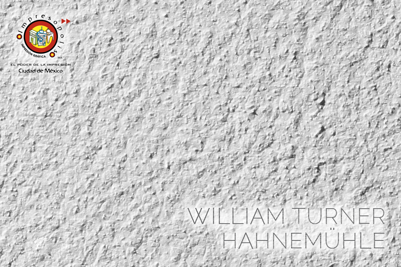 IMPRESION EN PAPEL ALGODON WILLIAM TURNER
