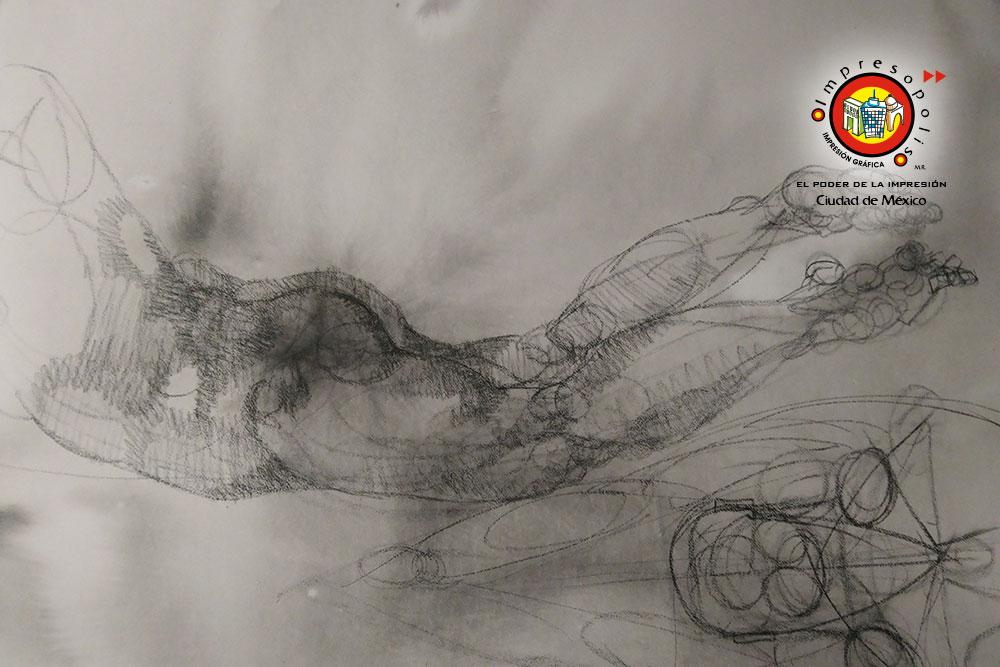 Digitalizacion de dibujos al carbon y reproduccion de originales