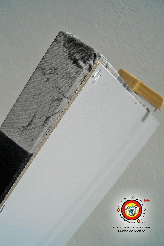 Reverso de conservacion para montaje en canvas