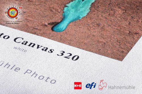 PHOTOCANVAS-gde-1