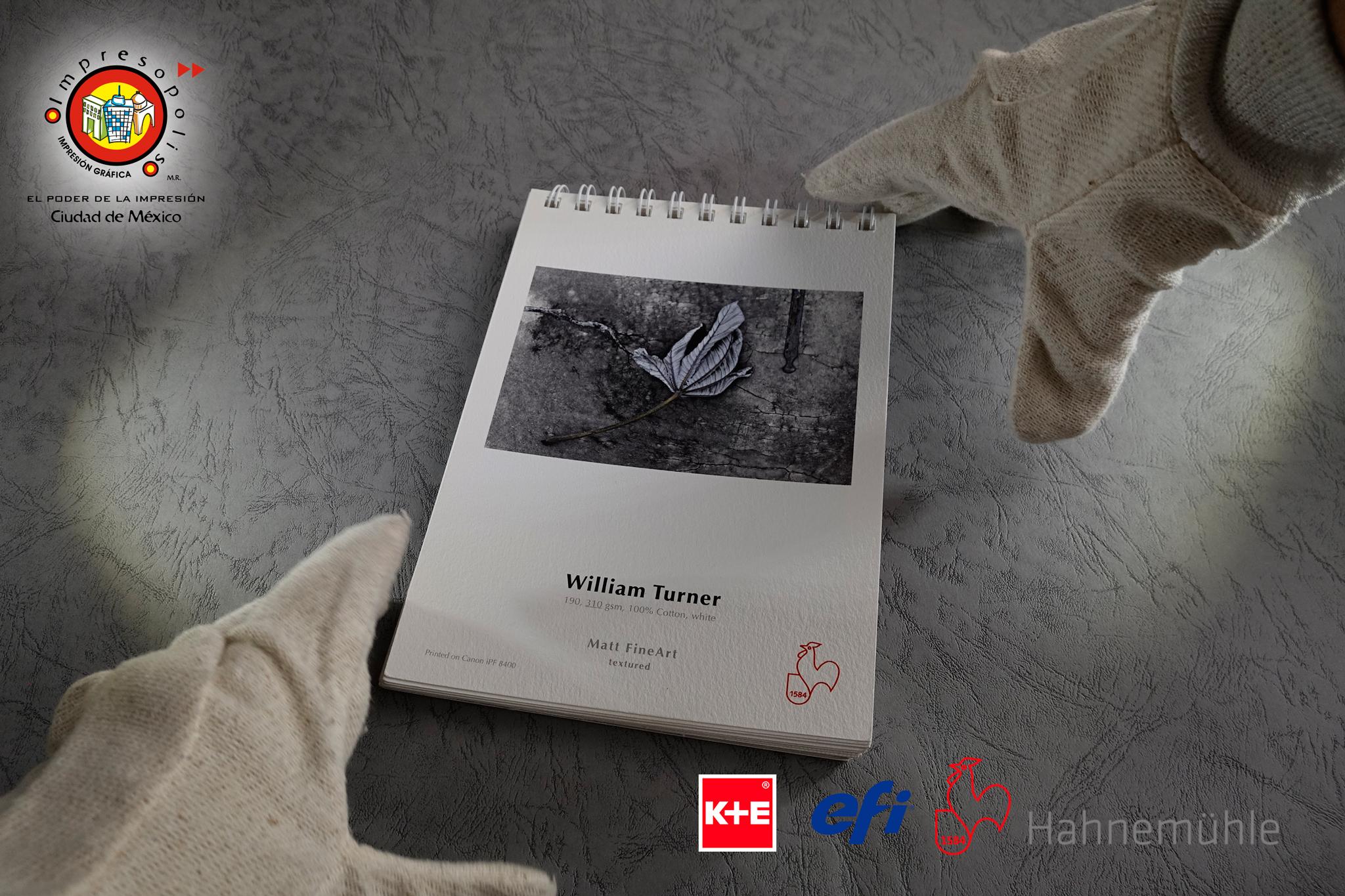 WILLIAM-TURNER-gde-13